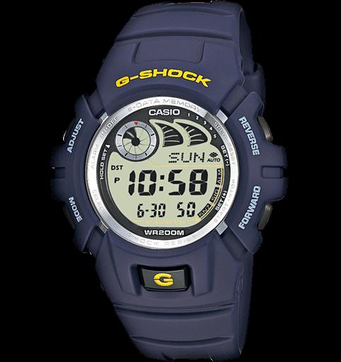 G 2900F 2VER